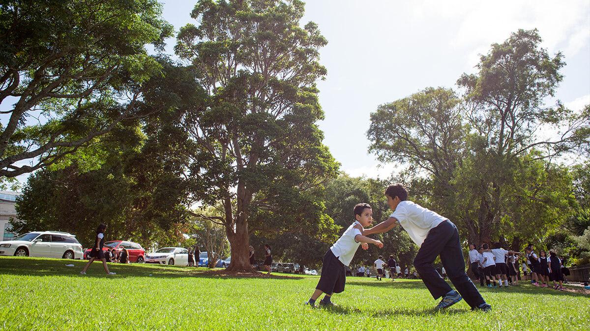 ニュージーランド留学おススメ学校|オークランドドメイン