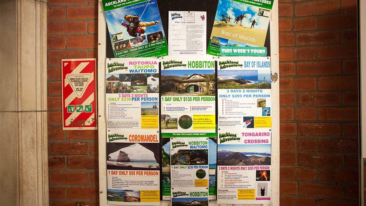 ニュージーランド留学おススメ学校|KAPLANアクティビティ